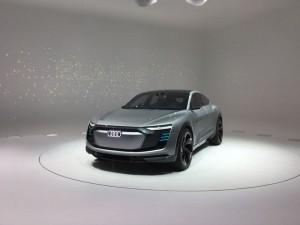 Audi_Elaine